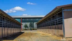 Dual horse stables