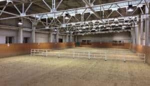 Horses riding arena